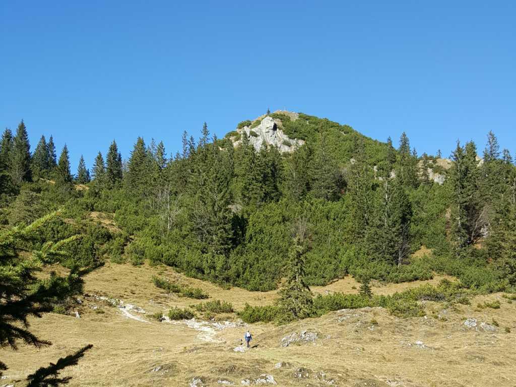 Wiesenflächen auf dem Weg zum Schildenstein